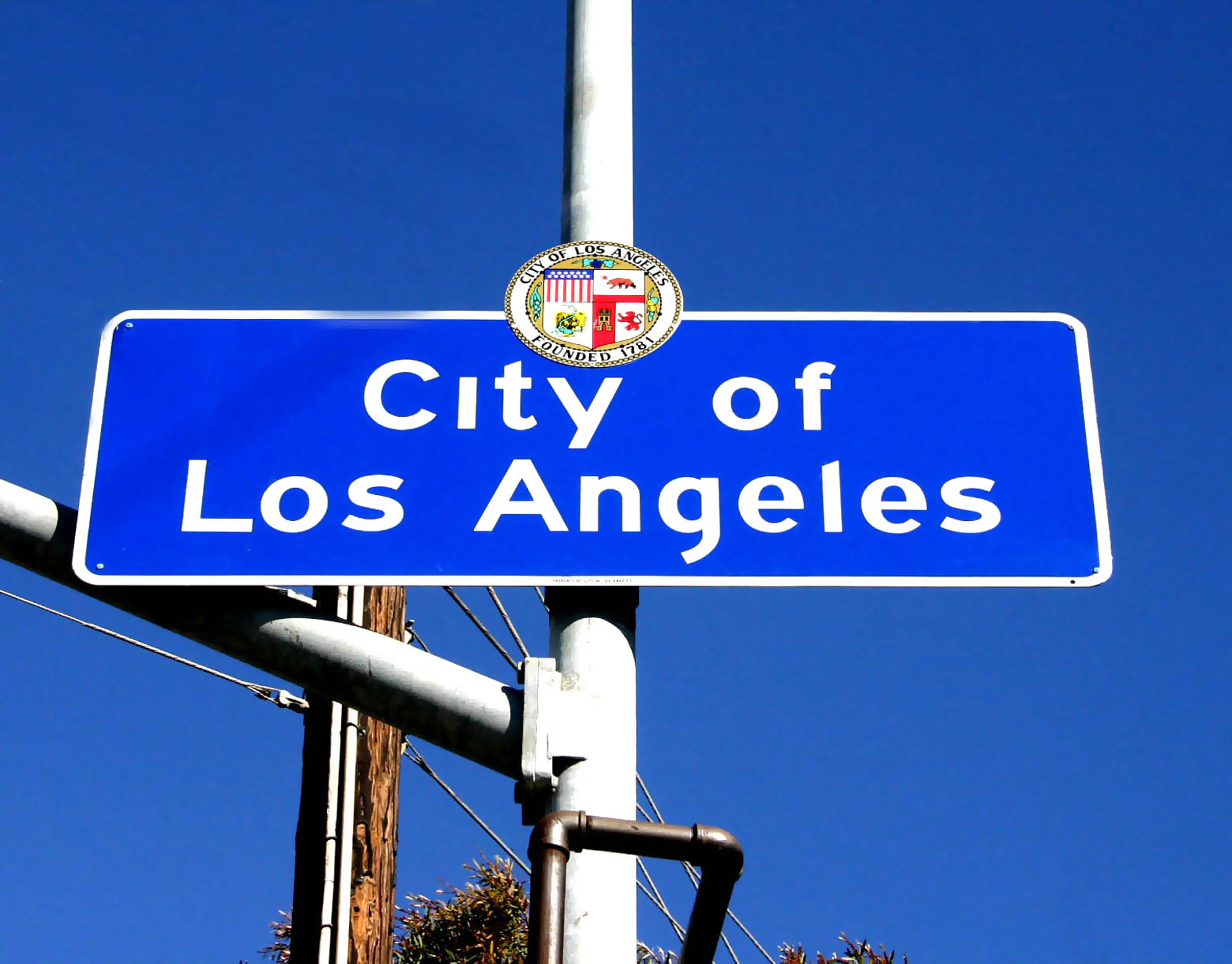 The city of los angeles essay