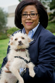 Mayoral Candidate Perry