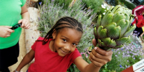 garden-fresh-project-child